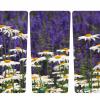 265_bloemen_madeliefjes_met Lavendel